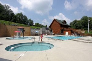 Pigeon Forge Cabin With Outdoor Pool Access